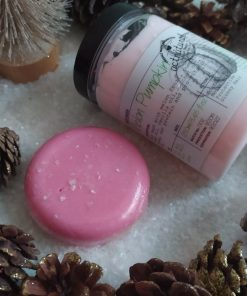 Πακέτο δώρου με Shampoo Bar WASPBERRY 85gr και Hair Conditioner, Hair mask or Leave in MELON PUMPKIN 250ml